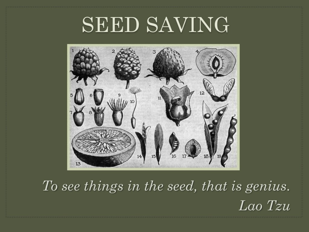 Seed-Saving-Presentation-English